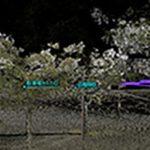 低密度/グラウンドフィルタリングの併用例